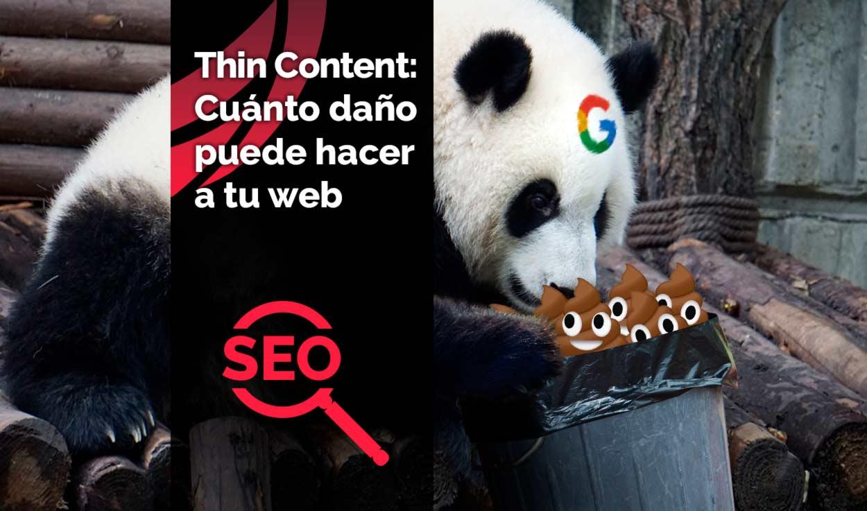Thin Content: qué es y cuánto daño puede hacer a tu web